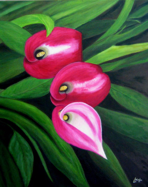 imagen de  cuadro oleo Mirelu. Título: Calas Rosas