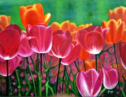 imagen de cuadro oleo Mirelu. Título: Tulipanes II