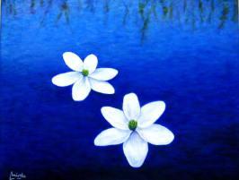 imagen de cuadro oleo Mirelu. Título: Flores Blancas.